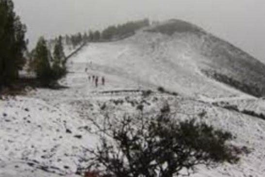 Winter2014-3