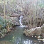 Zu viele Besucher gefährden das Barranco de Azuaje