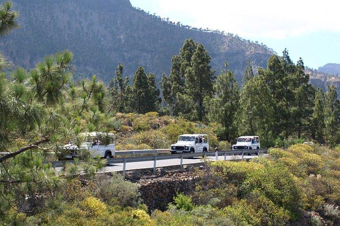 Gran Canaria Ausflug: Jeepsafari auf Gran Canaria – Abenteuerrundfahrt