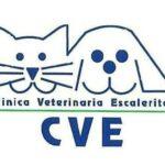 CLÍNICA VETERINARIA ESCALERITAS S.L.