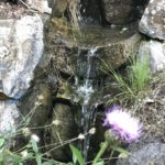 Jardin Canario - Wasserlauf