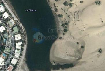Mischwassersee La Charca wird mit dem Meer verbunden