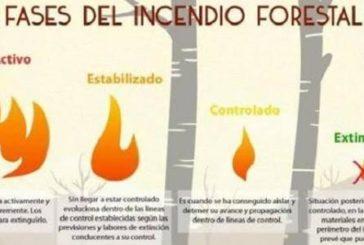 Waldbrand auf Gran Canaria - Was bedeuten die 4 Stufen bei den Meldungen genau?