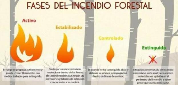 Waldbrand auf Gran Canaria – Was bedeuten die 4 Stufen bei den Meldungen genau?