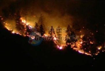 Großbrand auf Gran Canaria - UPDATE: Feuer unter Kontrolle, jedoch noch nicht gelöscht!