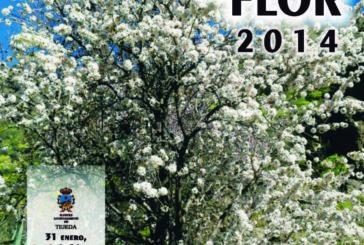 Mandelblütenfest 2014 auf Gran Canaria - Termine stehen fest