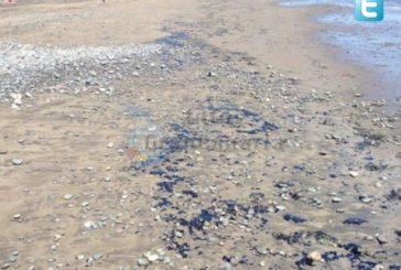 Playa Aguila erneut wegen Öl gesperrt