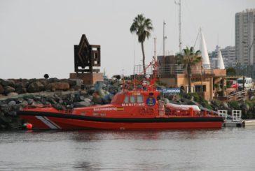 Wal kollidiert mit Segelboot