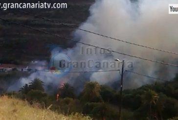 Palmenwald zwischen Santa Lucia und San Bartolome in Flammen