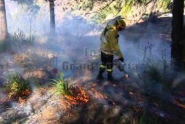 Prävention gegen Waldbrände - Auf den Gipfeln brennt es