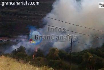 Brandstifter des Feuers in der Schlucht von Rosina verhaftet
