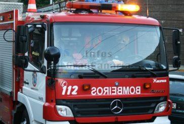 Feuer zerstörte in der Nacht eine Fläche von 4.000-5.000 Quadratmetern