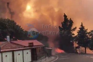 Schwerer Waldbrand wütet mitten auf Gran Canaria (inkl. Video)