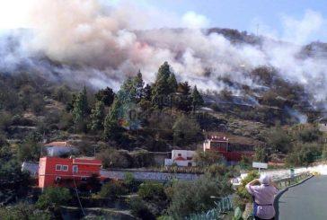 Kleinerer Steppenbrand zerstört 3 Hektar Land auch Mandeln betroffen