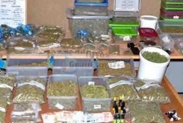Drogenbande in Playa del Inglés dingfest gemacht