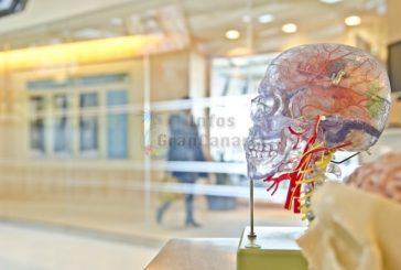 14,5% der Todesfälle auf den Kanaren durch neurologische Erkrankungen hervorgerufen