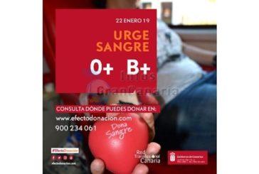 Blutspende: Dringend Blut der Gruppen 0 und B+ auf den Kanaren benötigt!