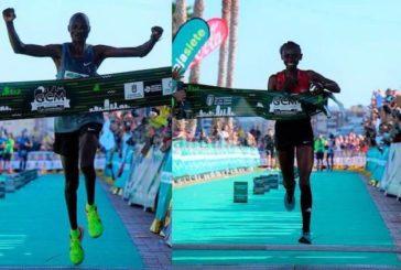 Neue Zeitrekorde beim Gran Canaria Marathon 2019!