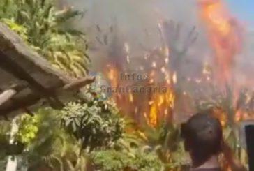 Waldbrand in Fataga am Hotel Molino de Agua ausgebrochen - unter Kontrolle!