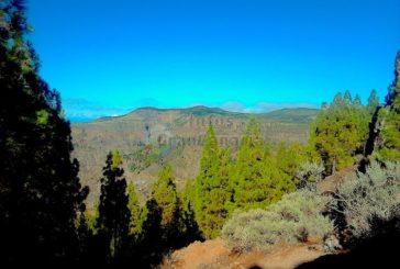Alertgran - Überwachung der Berge durch Sensoren und Kameras - Neues Frühwarnsystem kommt
