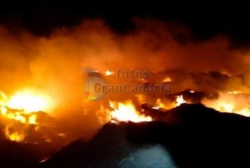 Erneutes Großfeuer in Agüimes - Ehemalige Tomatenfelder standen in Flammen