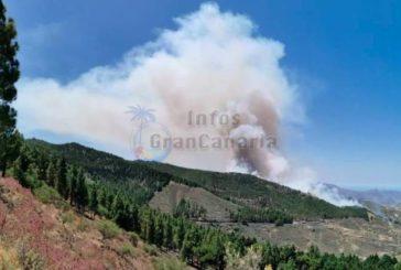 Waldbrand in den Bergen von Gran Canaria August 2019 (inkl. Videos) - GELÖSCHT