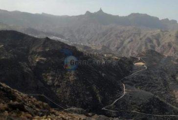 Nach dem Waldbrand in Artenara werden Forderungen laut - 666 Hektar vollständig zerstört