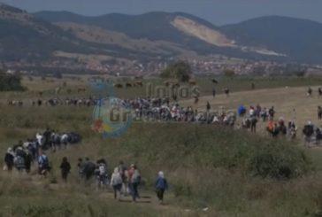 Flüchtlinge aus Syrien sollen auch auf den Kanarischen Inseln aufgenommen werden