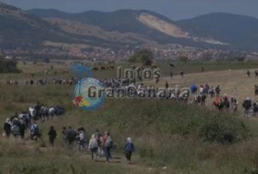 Gran Canaria könnte mehrere hundert Flüchtlinge aufnehmen