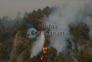 Feuer auf La Palma ist endgültig unter Kontrolle