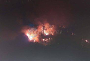 Waldbrand in Risco Blanco unter Kontrolle