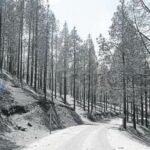 Nach dem großen Waldbrand fließen weitere 8,25 MIO € für die Sanierung des Straßennetzes in den Bergen