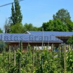 2. Jahr in Folge – Gran Canaria fördert die Installation von Solaranlagen auf Privathäusern