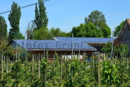 2. Jahr in Folge - Gran Canaria fördert die Installation von Solaranlagen auf Privathäusern