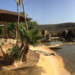 Gran Canaria Ausflug – Ein Tag im Cocodrilo Park in Agüimes