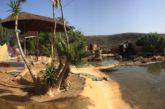 Gran Canaria Ausflug - Ein Tag im Cocodrilo Park in Agüimes