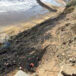 2 Feuer in der Silvesternacht in Maspalomas – Palmen und Meereskiefern zerstört