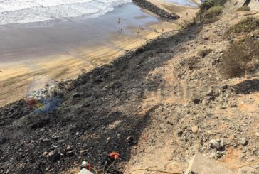 2 Feuer in der Silvesternacht in Maspalomas - Palmen und Meereskiefern zerstört