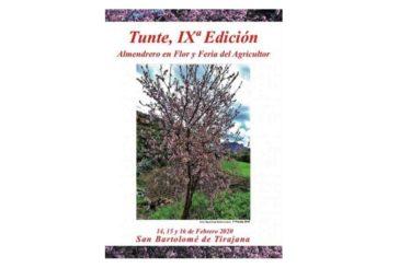 Mandelblütenfest in San Bartolomé de Tirajana (Tunte) 2020
