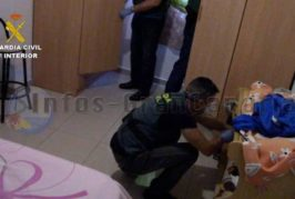 Festnahme in Las Palmas wegen Handels mit Kinderpornografie