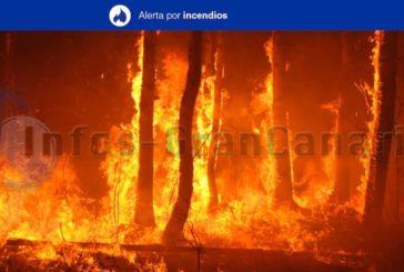 Höchste Warnstufe für Waldbrandgefahr auf Gran Canaria & Teneriffa aktiviert!