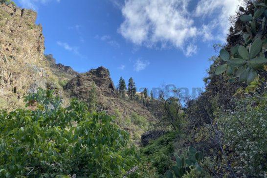 Barranco La Mina - Asublick nach oben
