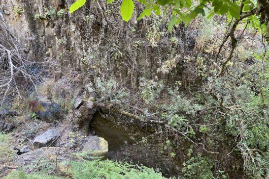 Barranco La Mina - Tiefe Schlucht