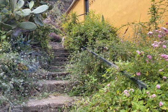 Barranco La Mina - Treppe hoch
