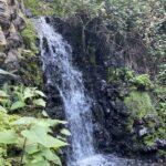 Gran Canaria Ausflug – Barranco de los Cernícalos