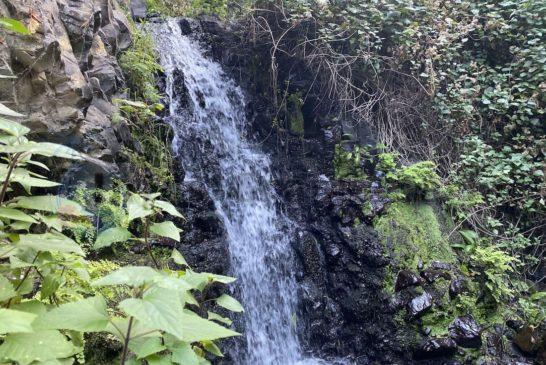 Wasserfaelle im Barranco