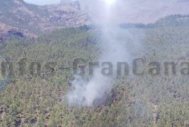 Waldbrand in Tejeda sorgte für Schreckmoment - kontrolliert!