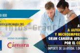 So stellen Sie den Antrag für die 1.000 € Soforthilfe für Selbstständige auf Gran Canaria
