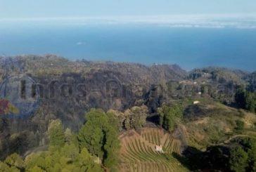 Schwerer Waldbrand auf La Palma unter Kontrolle 1.200 Hektar betroffen
