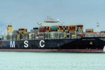 Historischer Containerumschlag in Las Palmas - MSC Flavia zu Gast